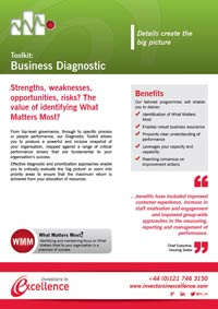 Toolkit: Business Diagnostics